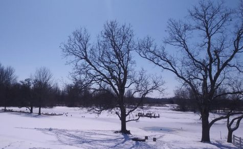 The Late Winter